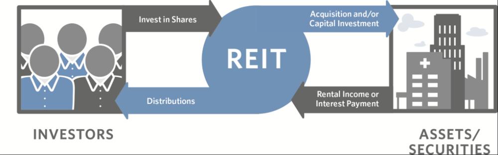 Come funzionano i REITS e quanto rendono i REIT